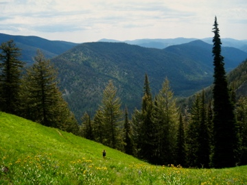 Lodging in the Methow Valley, Winthrop, Twisp, and Mazama ...